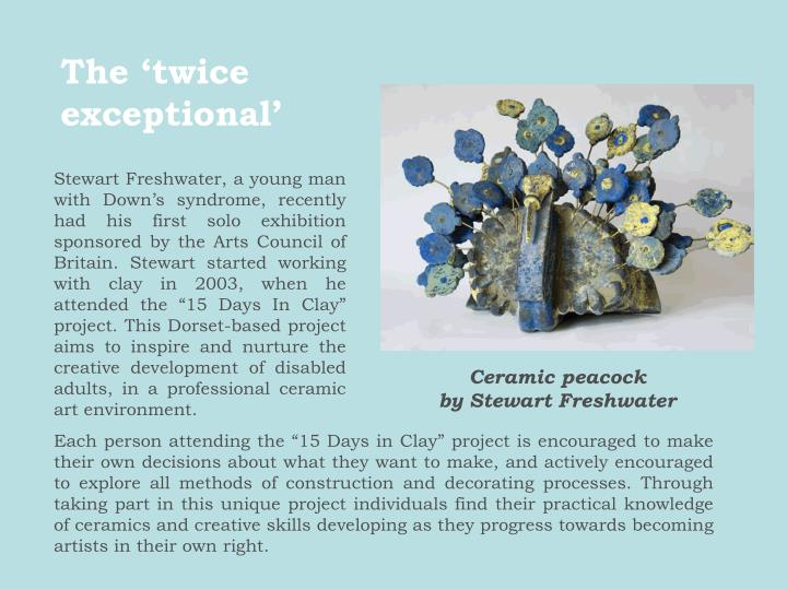 "Stewart Freshwater, a young man with Down's syndrome, recently had his first solo exhibition sponsored by the Arts Council of Britain. Stewart started working with clay in 2003, when he attended the ""15 Days In Clay"" project. This Dorset-based project aims to inspire and nurture the creative development of disabled adults, in a professional ceramic art environment."