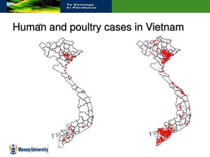 Human and poultry cases in Vietnam