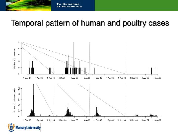 Temporal pattern of human and poultry cases
