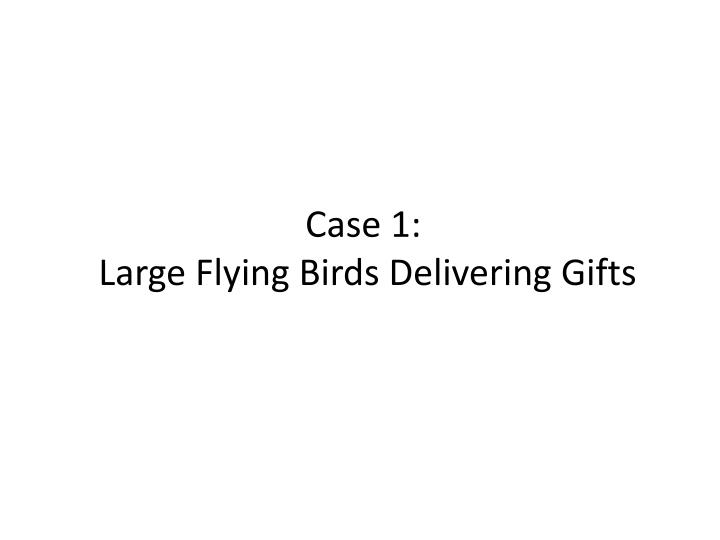Case 1 large flying birds delivering gifts