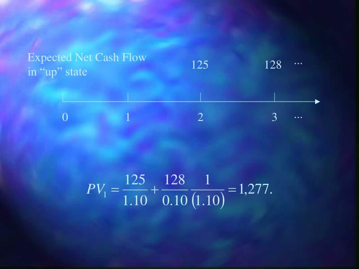 Expected Net Cash Flow