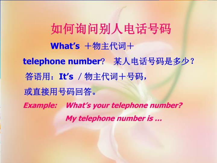 如何询问别人电话号码