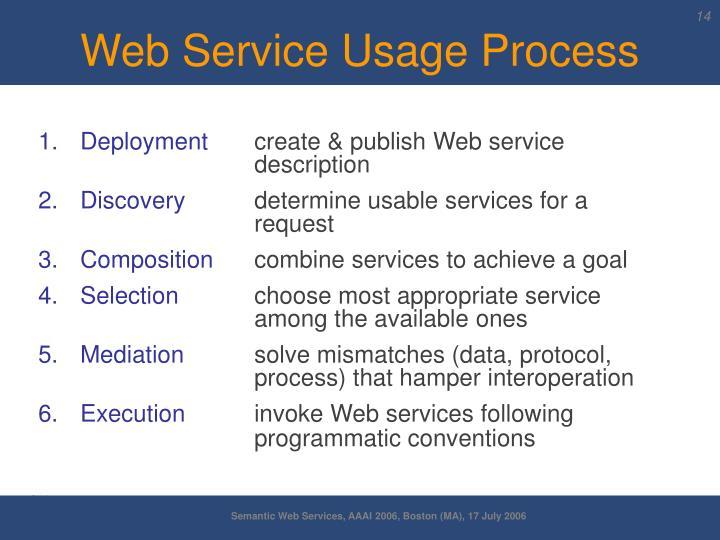 Web Service Usage Process