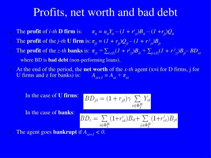 Profits, net worth and bad debt