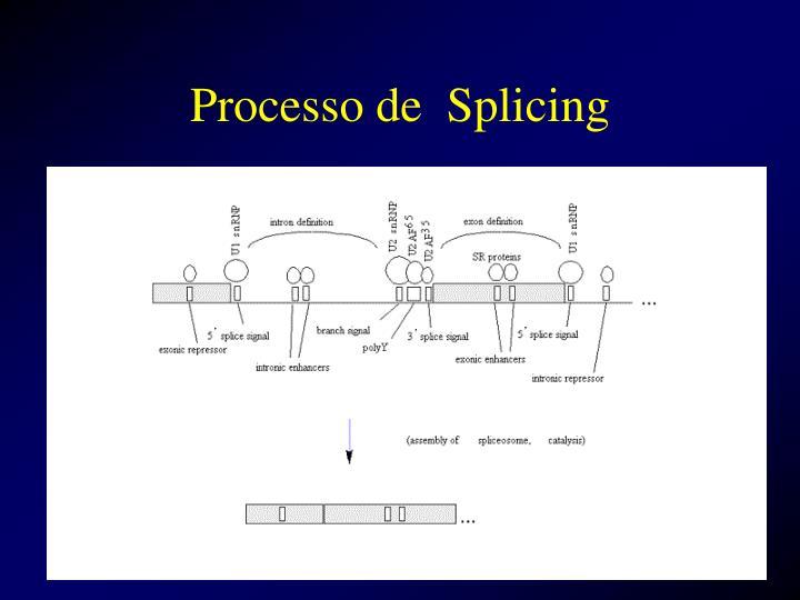 Processo de  Splicing