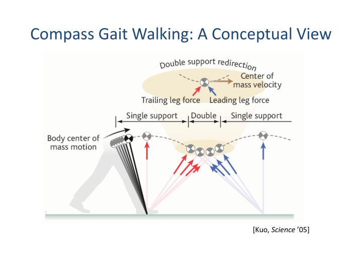 Compass Gait Walking: A Conceptual View