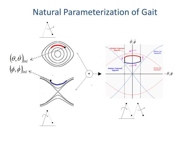 Natural Parameterization of Gait