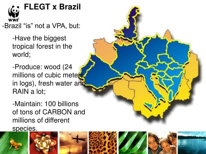 FLEGT x Brazil