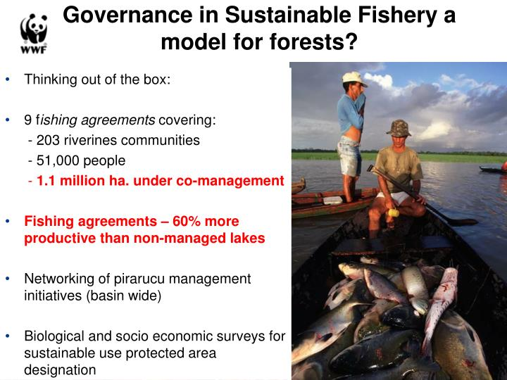 Governance in Sustainable Fishery a model for forests?
