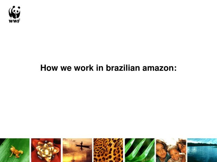 How we work in brazilian amazon: