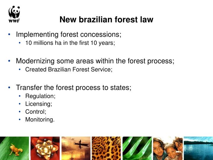 New brazilian forest law