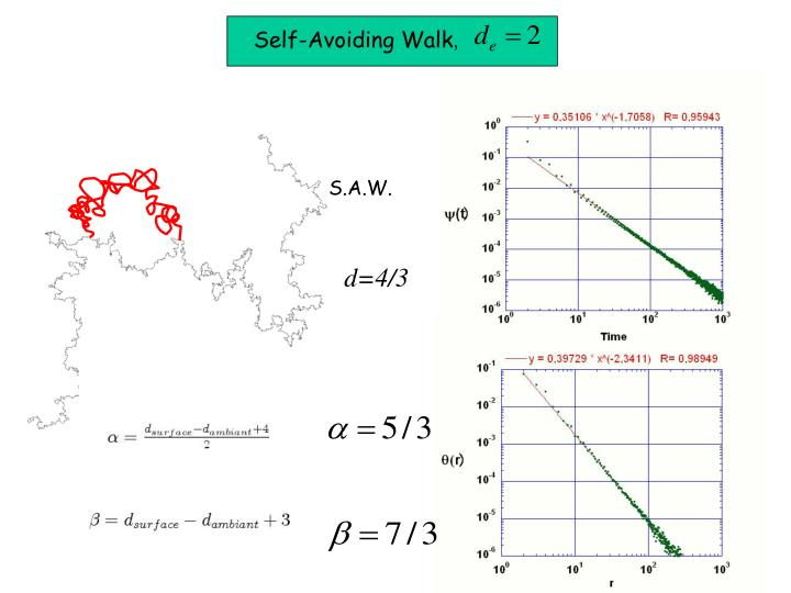 Self-Avoiding Walk