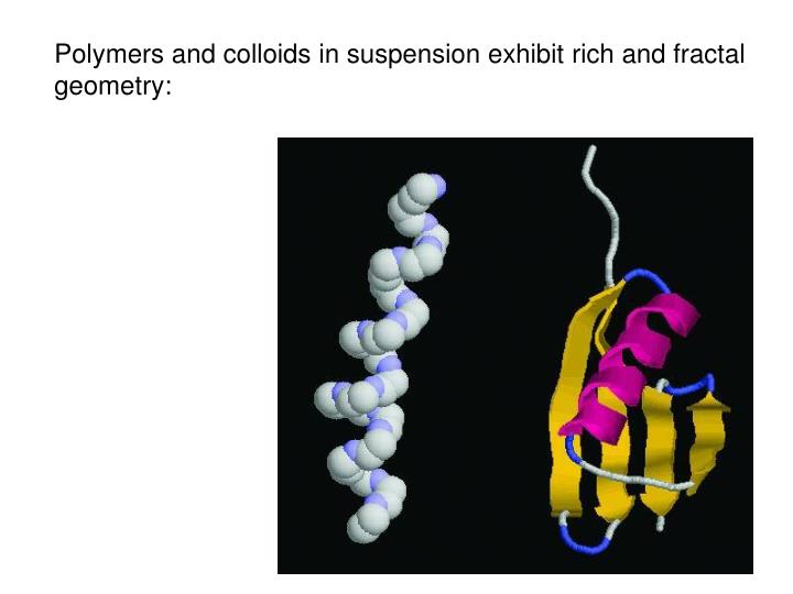 Polymers and colloids in suspension exhibit rich and fractal geometry: