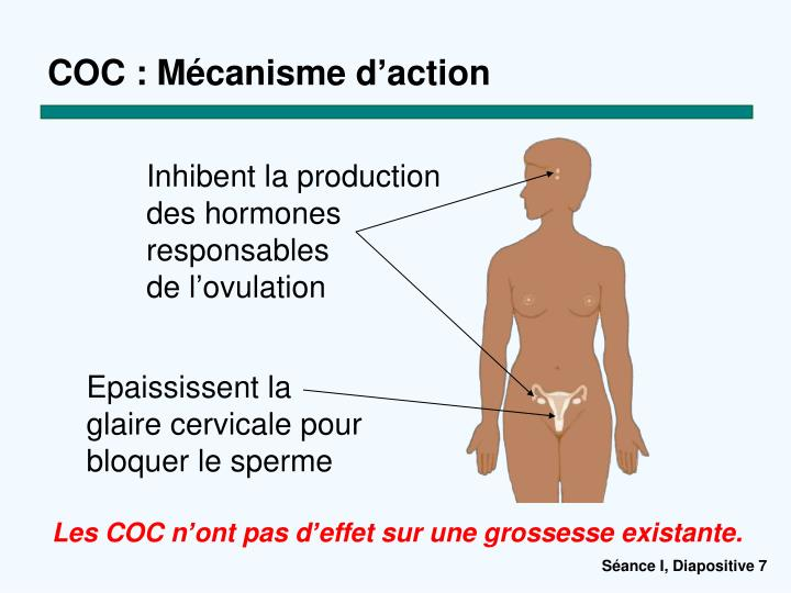 COC : Mécanisme d
