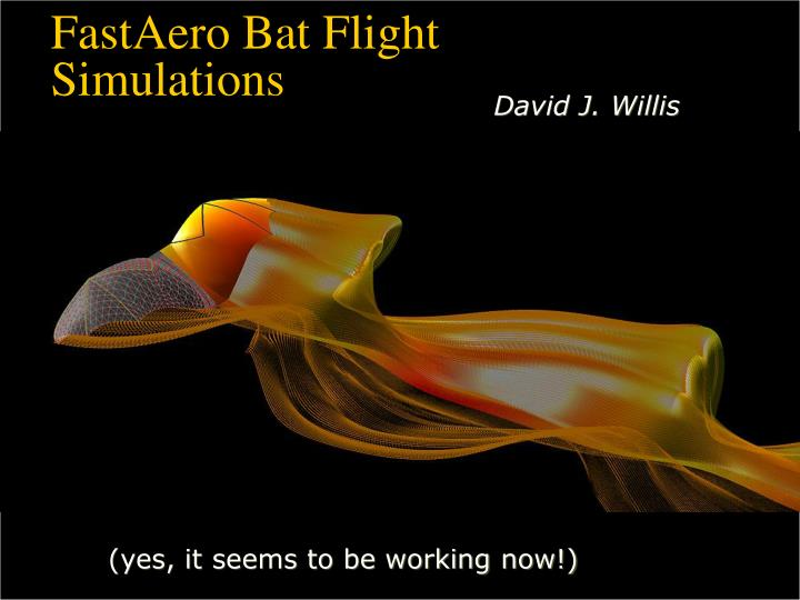 FastAero Bat Flight Simulations