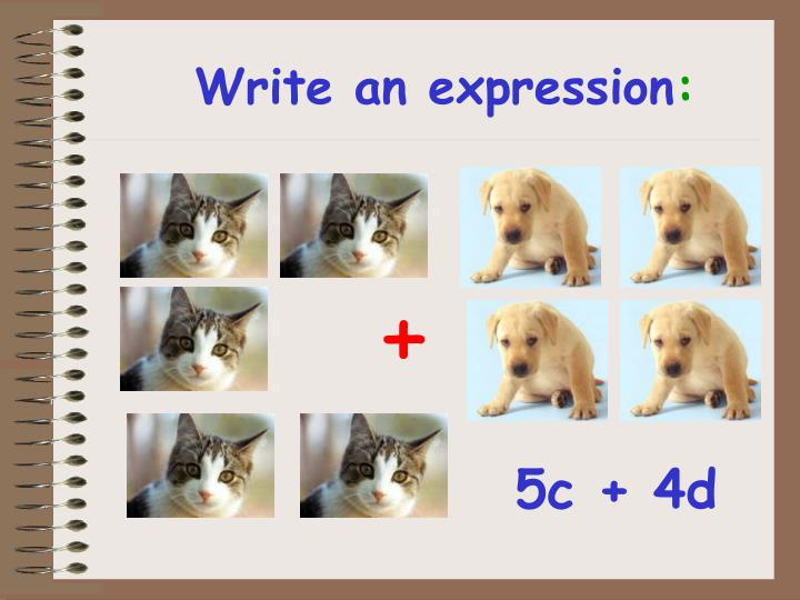 Write an expression