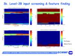 3b level 2b input screening feature finding