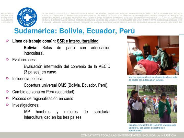 Sudamérica: Bolivia, Ecuador, Perú