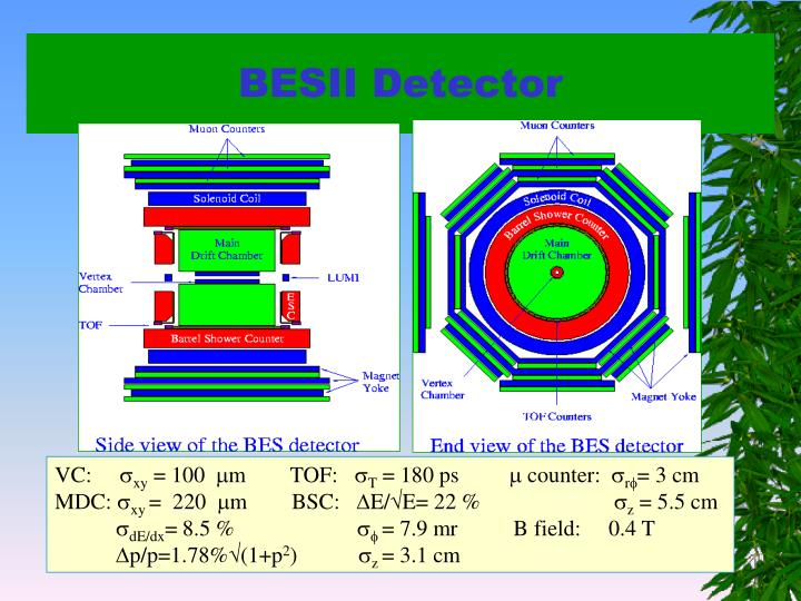 BESII Detector