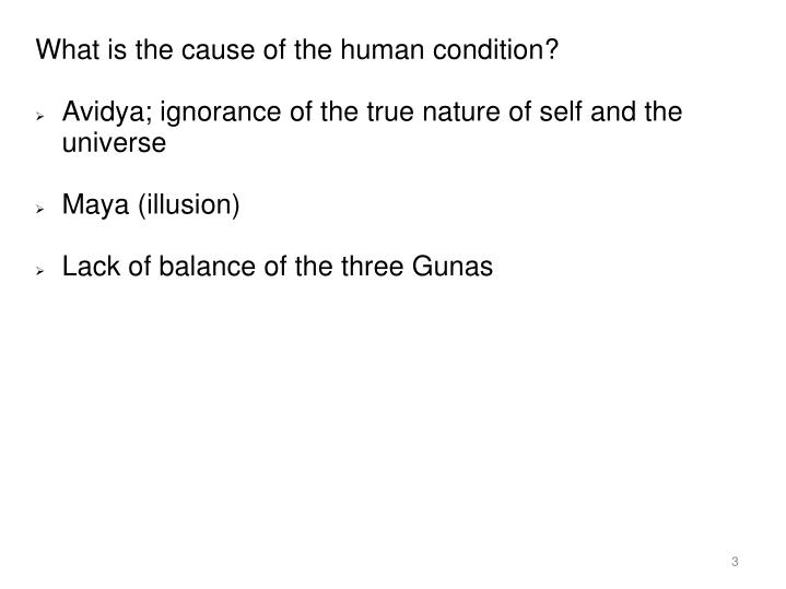 What is the cause of the human condition?
