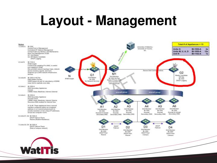 Layout - Management