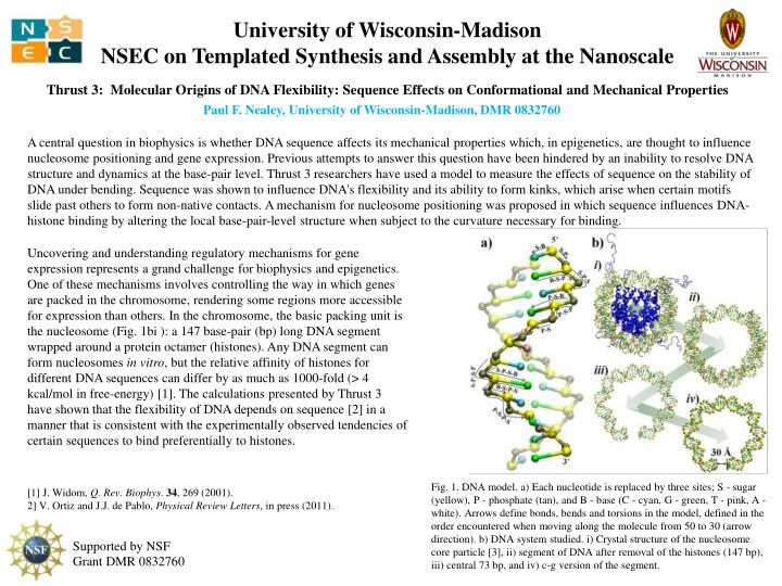 university of wisconsin madison nsec on templated synthesis and assembly at the nanoscale
