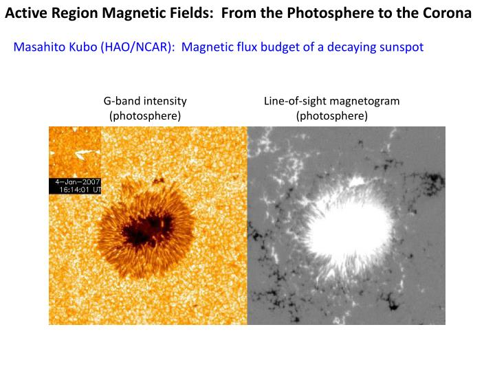 Active Region Magnetic Fields:  From the Photosphere to the Corona