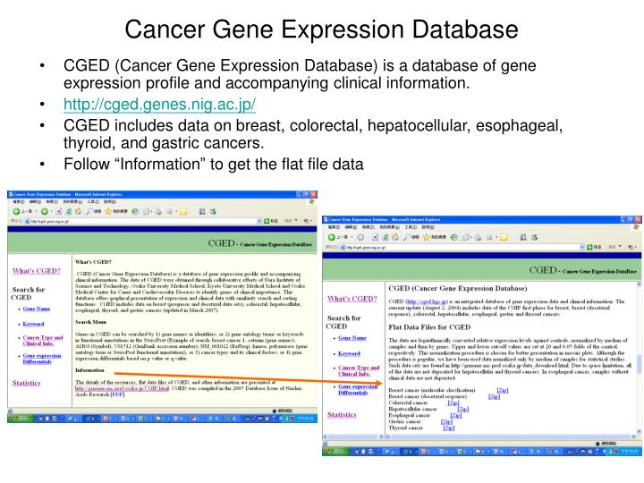 Cancer Gene Expression Database