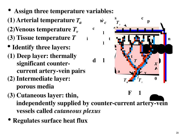 (1) Arterial temperature