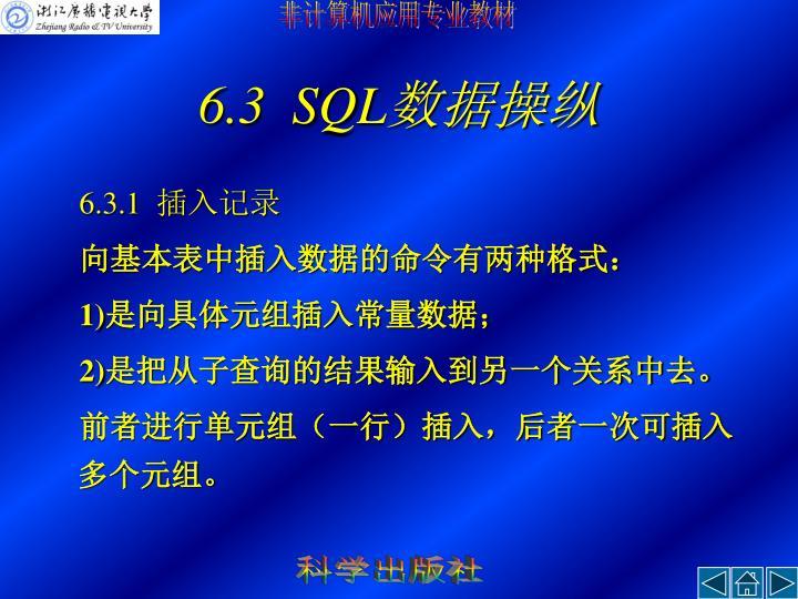 6.3  SQL