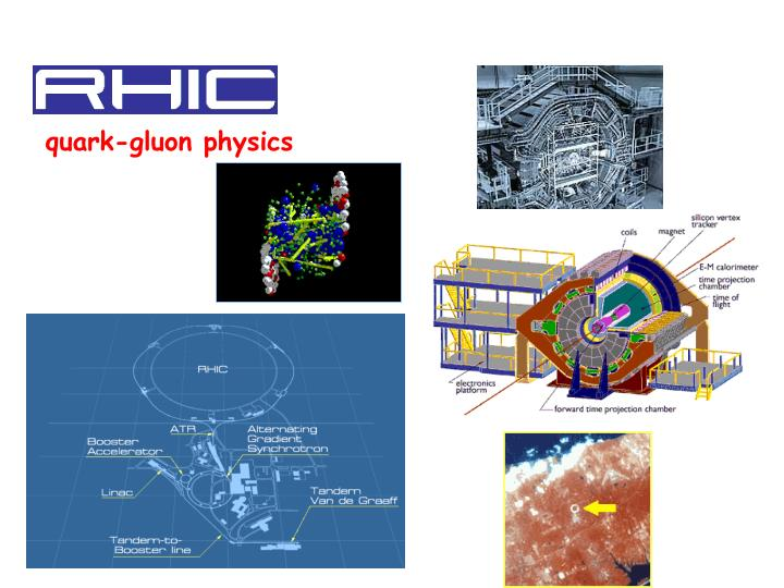 quark-gluon physics