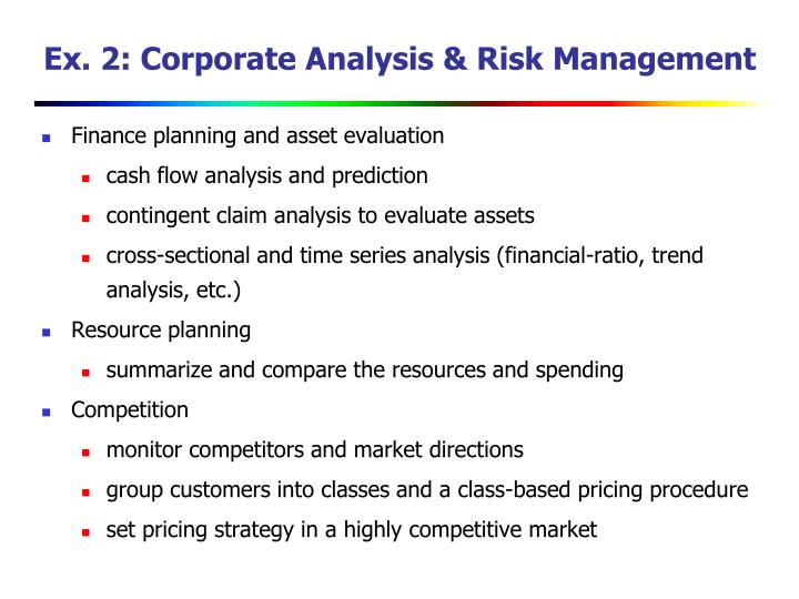 Ex. 2: Corporate Analysis & Risk Management