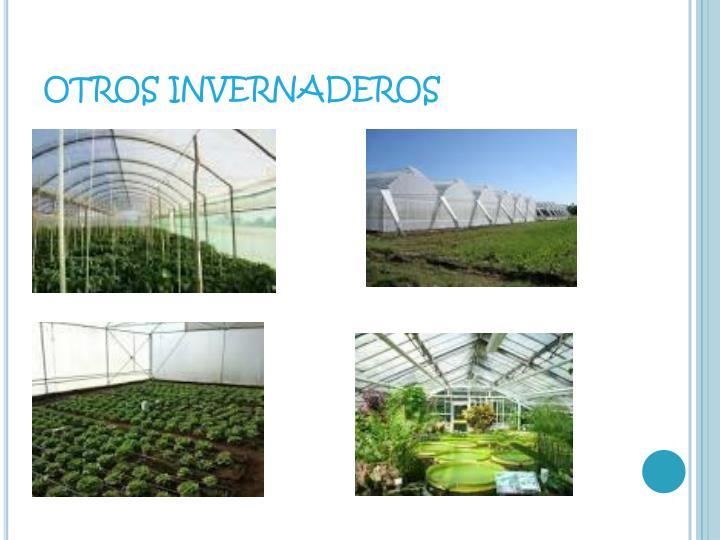 OTROS INVERNADEROS