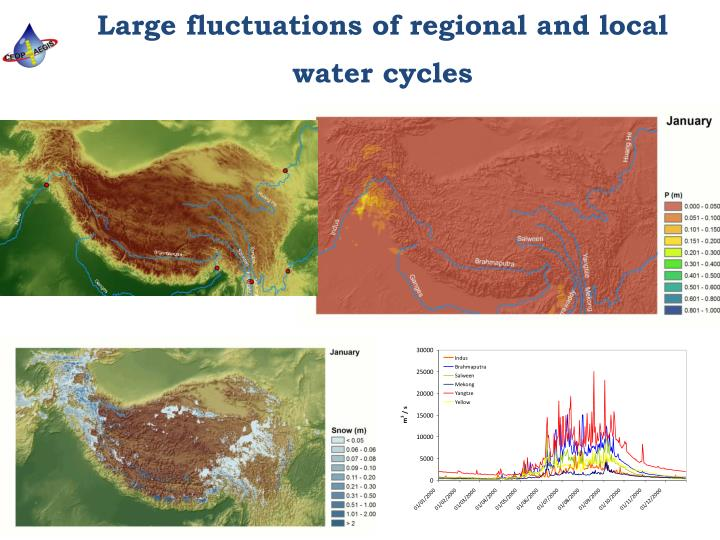 Large fluctuations of regional and local water cycles