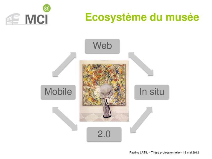 Ecosystème du musée