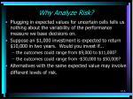 why analyze risk