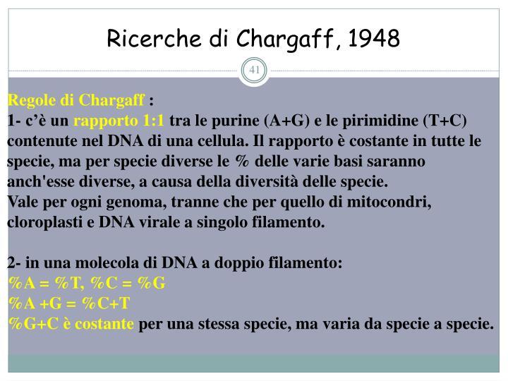 Ricerche di Chargaff, 1948