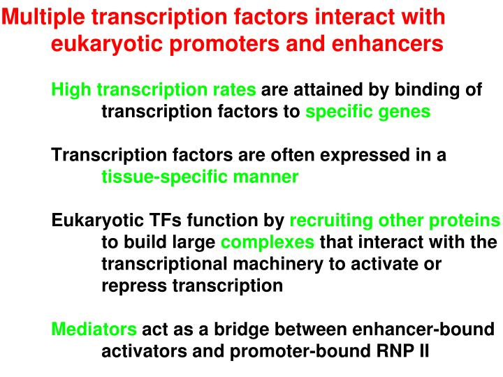 Multiple transcription factors interact with