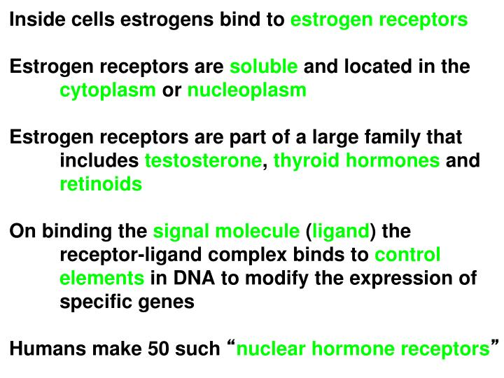 Inside cells estrogens bind to