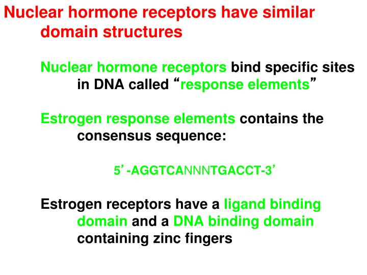 Nuclear hormone receptors have similar 	domain structures