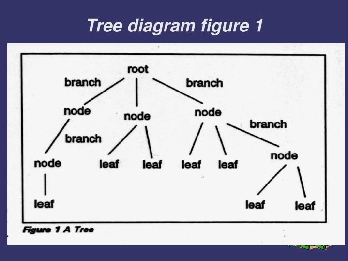 Tree diagram figure 1