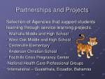 partnerships and projects