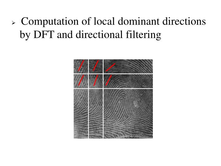 Computation of local dominant directions by DFT and directional filtering