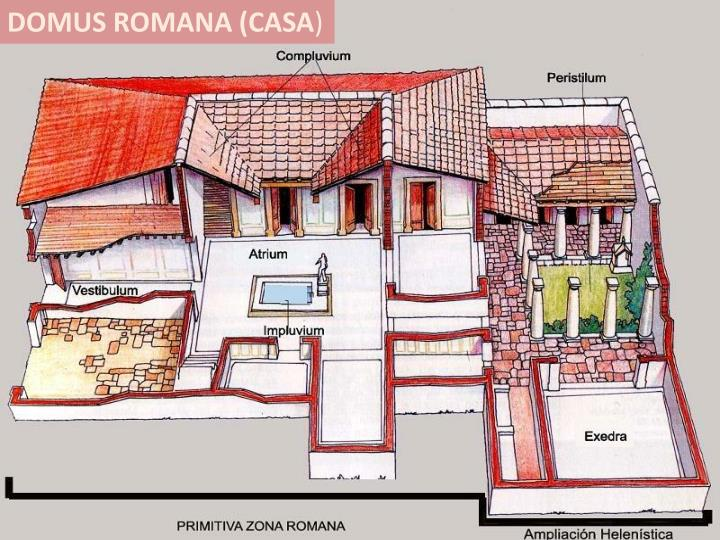DOMUS ROMANA (CASA
