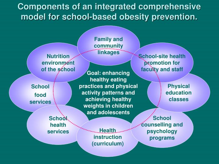 Components of an integrated comprehensive model for school-based obesity prevention.