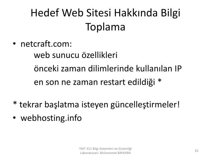 Hedef Web Sitesi Hakkında Bilgi Toplama