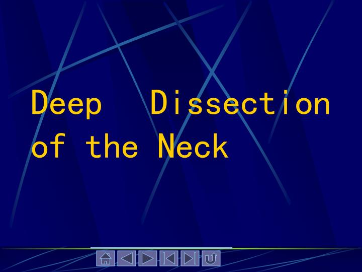 Deep Dissection of the Neck