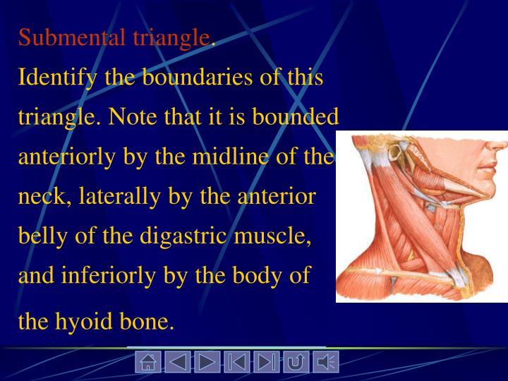 Submental triangle