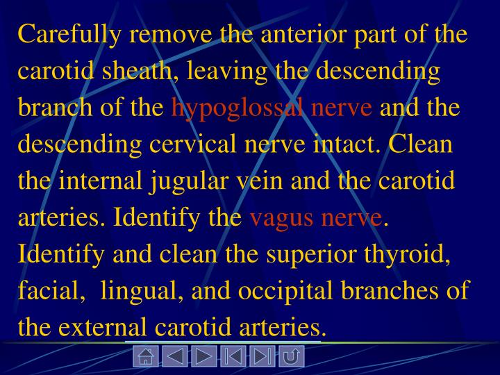 Carefully remove the anterior part of the carotid sheath, leaving the descending branch of the