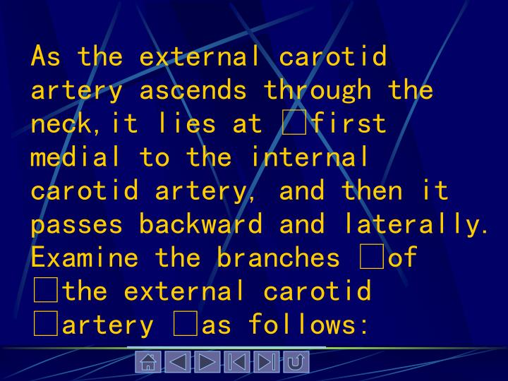 As the external carotid artery ascends through the neck,it lies at first medial to the internal carotid artery, and then it passes backward and laterally. Examine the branches of the external carotid artery as follows: